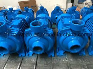 Hf/6ar (2.2kw/3 л.с.) центробежный водяной насос с латунными крыльчатки