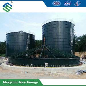 전분 플랜트를 위한 Aeesmbled Biogas 발효작용 탱크