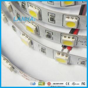 indicatore luminoso di striscia di 12V SMD 5050 60LED/M nanowatt 4000K LED