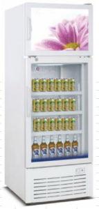 Apresentação vertical Deluxy frigorífico para o Café Pizza bebida bolo