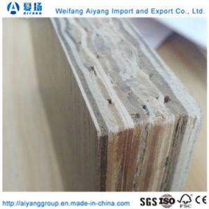 28mm Water-Proof Black Bamboo recipiente de madera pisos de madera contrachapada de