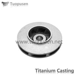 Chemical IndustryのためのチタニウムのCasting Pump