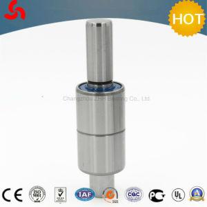 O rolamento da bomba de água Wb1630098 Rolamento Automático (WB1630083D1/WB1630083D2/WB1630083D3/WB1630083D4/WB1630083D5/WB1630083D7/WB1630084/WB16300841/WB16300842)