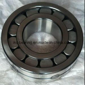 Roulements à rouleaux cylindriques Lsl192352-TB