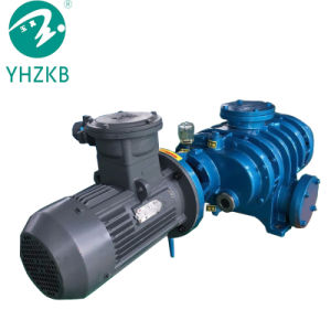 Vakuumpumpe-/Air-Pumpe der Wurzel-300L/S