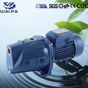 Fujian Mindong chorro de agua a presión interna de la bomba auxiliar de jardín