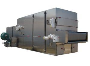 Entrada do Secador solar de frutos comerciais a máquina