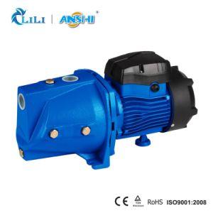 Anshi 1.0HP Strahlen-Wasser-Pumpe mit thermischem Schoner (JSW10M/B)