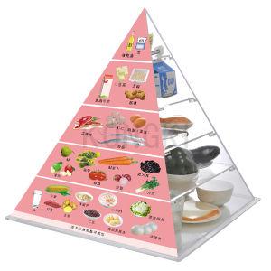 Dernier produit santé diète pyramide en plastique avec modèle alimentaire simulé