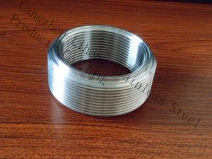 Capezzolo filettato dell'accessorio per tubi di Bsp dell'acciaio inossidabile dal tubo