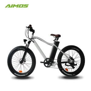 E Bike bicicleta eléctrica de 750 vatios Ebike Fat