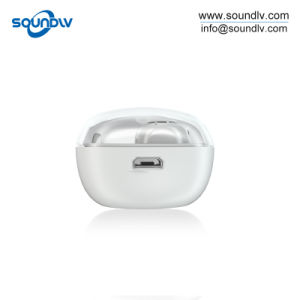 Geräusche, die den Tws Sport laufen lässt magnetischen drahtlosen Bluetooth Stereokopfhörer beenden