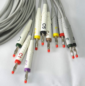 Schiller EKGケーブル10の鉛4.0 mmのバナナPin