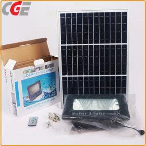 Indicatore-Controllo impermeabile della lampada solare esterna di Cge che illumina l'indicatore luminoso di via solare