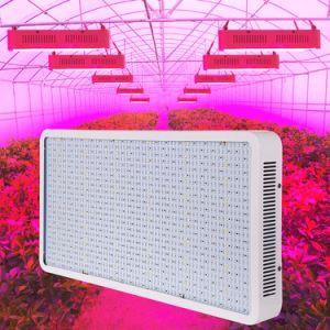 Hotsale 2018 i più nuovi 800W LED coltiva la lampadina