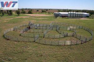 Comitati del bestiame della Cina/comitati iarda del cavallo, iarde del comitato del Corral, recinzione del comitato di Cattel
