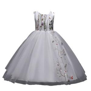 女の子の刺繍のダンスの網の服