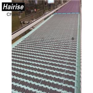 Hairise Gummideckel-modularer Bandförderer mit Plastikrollen-Schiene