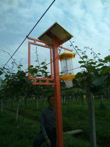 電気Mosquito KillersかSolar Insect Light Trap、Mosquito RepellentのSolar Lights