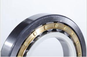 Rolamento de Rolete de isolados personalizados utilizados em automóveis e máquina eléctrica