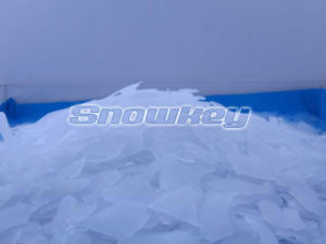 Snowkey China Top 1 F50 5T/24hr Flake máquina de gelo
