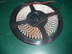 Cinta de LED Flexible SMD 3528 de Gaza, 60 LED IP/M33 CC12V