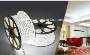 indicatore luminoso della corda di alta luminosità di 110V 220V SMD LED con colore bianco freddo