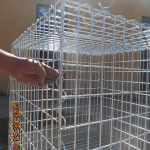 Malha de arame soldado galvanizado Gabião Box
