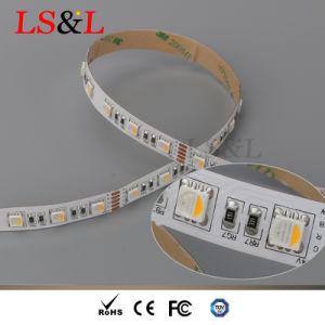 indicatore luminoso di striscia di colore LED di 84LEDs/M RGBW 5050 SMD