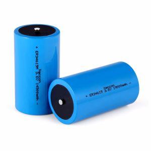 De Batterij van het Lithium van Er34615 19000mAh 3.6V Li-Socl2 voor Ampèremeter