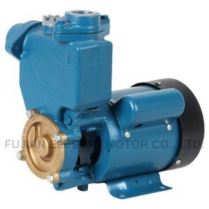 PS bombea agua con una fácil instalación y mantenimiento (PS-130AUTO)