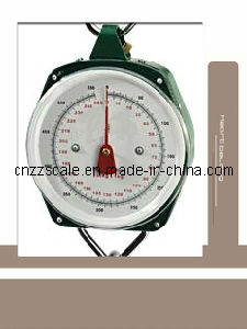 250kg/550lbs Salter Weighing Scale (ZZG-109)