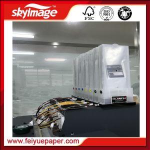 De eco-Oplosbare Printer van uitstekende kwaliteit van Mimaki Jv33-160 voor Digitale Druk