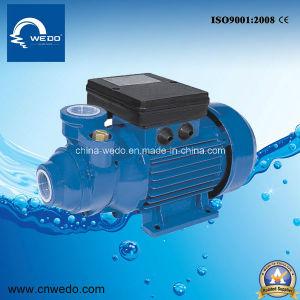 Ba3 가정 사용을%s 휴대용 전기 깨끗한 물 펌프 0.37kw/0.5HP 1inch
