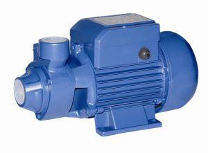 Pompa ad acqua (QB80)