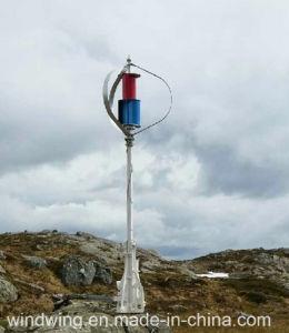 600W het Onafhankelijke Systeem van de Turbine van de Macht van de Wind van Maglev voor het Gebruik van het Huis