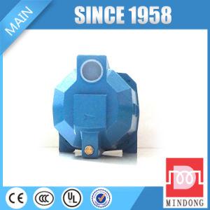 Большая водяная помпа ясности двигателя давления с баком 24L