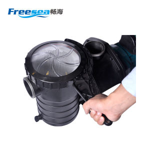 Swimmingpool-Filtergehäuse-Motor-Pumpe