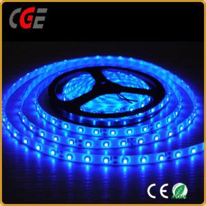 Vendita calda dell'indicatore luminoso di striscia di Istruzione Autodidattica 90 LED di Epistar 2835 60LEDs/M Max14.4W/M