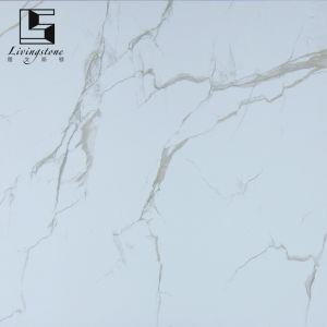 Tegel van de Vloer van de Tegel van Carrara de Marmeren Witte Volledige Verglaasde