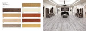 Glaseado Global de Nuevos Productos para Suelos baldosas de madera
