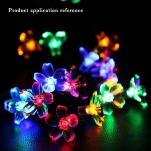 El LED parpadea la atmósfera del Festival de durazno colorida calle la luz solar