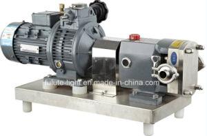 Steel di acciaio inossidabile Impeller Pump, Rotor Pump, Rotor Stator Pump con CE Certificate