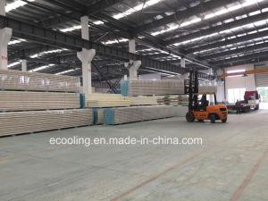 Isolier-PIR Panel für Kaltlagerungs-Dach /Wall feuerfest machen