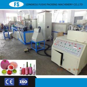 専門の製造のPEの泡のフルーツの純作成機械