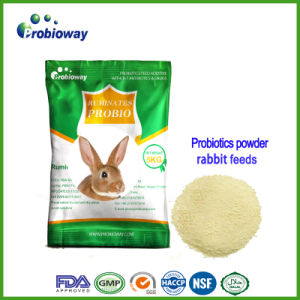 Additieven van het Voer van de Gist van de Zoogdieren van Probiotics van het Konijn van de Prijs van de fabriek de Kleine