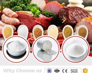 Het Citraat van het Natrium van de Rang van het voedsel met de Lage Prijs van de Fabriek