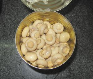 In Büchsen konservierter frischer vollständiger Pilz in der einfachen geöffneten Kappe