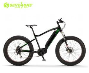 La grasa al por mayor de la montaña de neumáticos bicicleta eléctrica con freno de disco