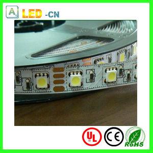 DC24V/12V 5050 tiras de LED